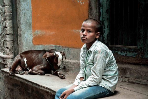 Bambino nelle strade di Varanasi con la sua capretta, India