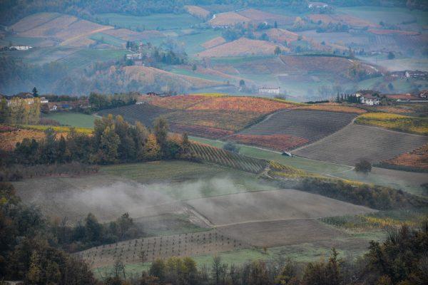 Le langhe Piemontesi con i suoi colori autunnali avvolti dalla nebbia