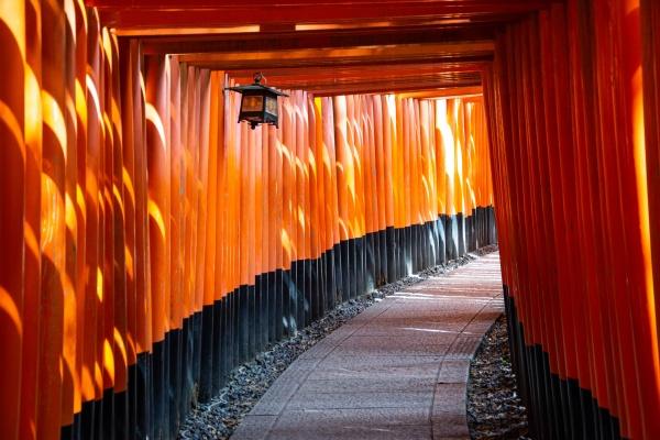 Il santuario scintoista Fushimi Inari a Kyoto in Giappone
